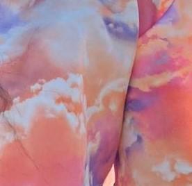 Pink Cloud Print (scuba)